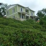 Green Prefab Homes