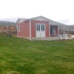 small green prefab homes